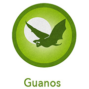 Wholesale Bat Guano, Sea Bird Guano