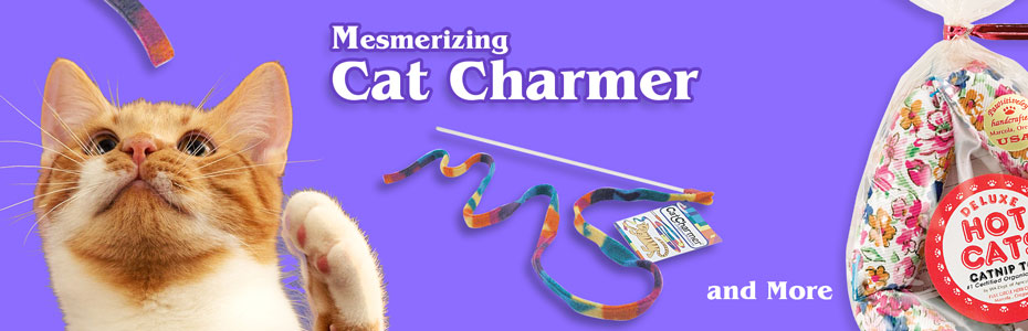 Wholesale Cat Toys & Dog Toys,Pet Supply